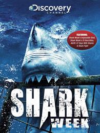 鲨鱼周2014