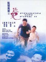 监狱风云2:逃犯 粤语