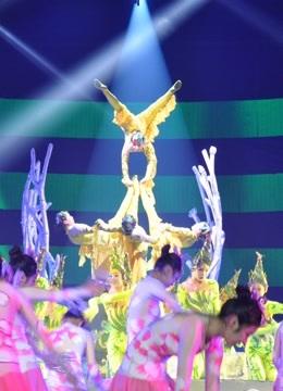 2017湖北卫视春晚
