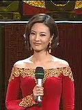 陕西卫视2013春晚