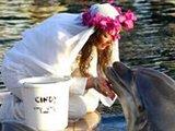 英百万富婆与35岁海豚结婚