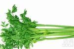春天吃五种蔬菜有助蔬菜宝宝提高抵抗力
