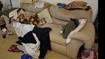 男子夜班回家发现垃圾满屋 床上陌生人鼾声大作