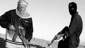 恐怖分子-好搜百科图片
