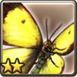 蝴蝶.png