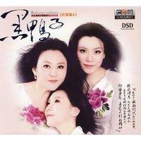 黑鸭子演唱组合成立于1992年,是中国歌坛的第一个和音组合,最初成员