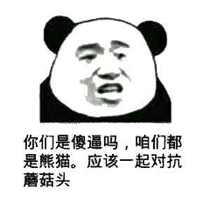 熊猫表情包8.jpg