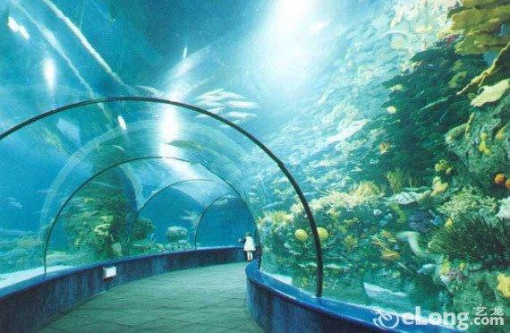 北京动物园的海洋馆好玩儿那个可是亚洲第一