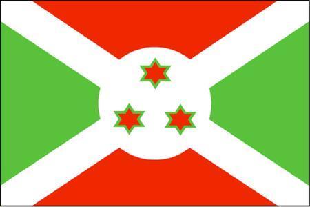 橙白绿中间有图案国旗