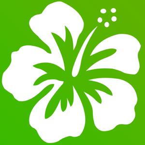 夏威夷花环动态壁纸