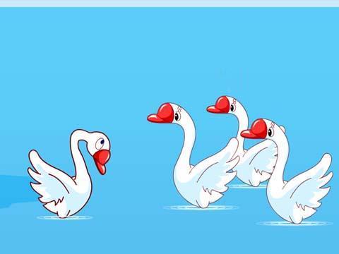 丑小鸭图片
