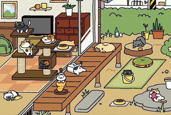 猫咪后院怎么换场景?切换场景操作方法技巧攻略!