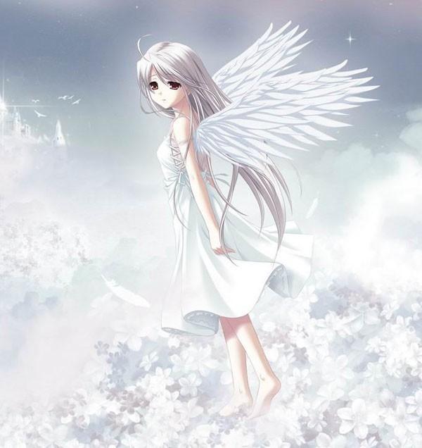一部动漫,是一个白头发有翅膀的女生,她的眼睛是棕色的,穿的是白裙子