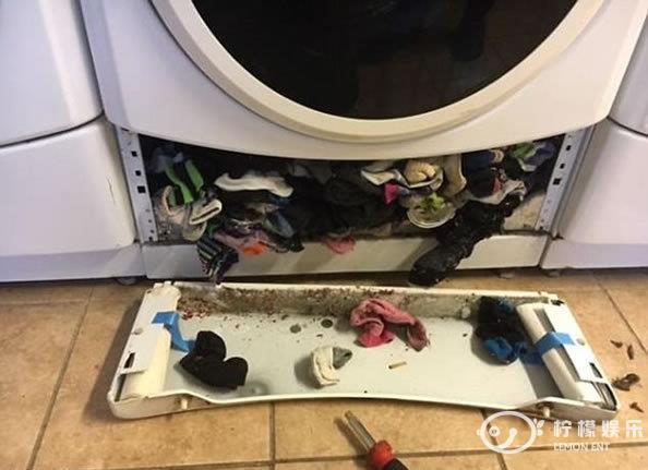 丈夫修理洗衣机打开一看惊呆了在场的妻子