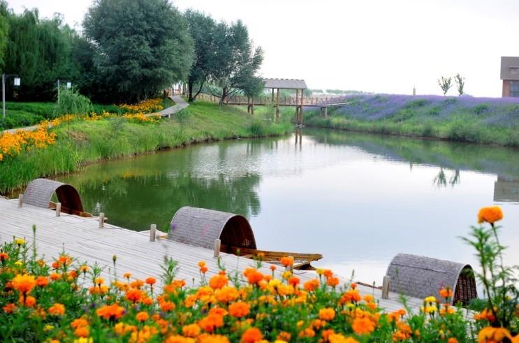 宁夏中卫金沙岛休闲度假区位于中国第四大沙漠
