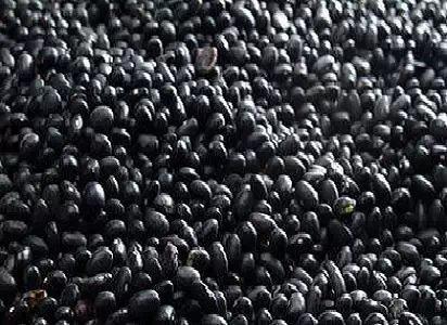 10大坚果食用禁忌:为了您的健康,请花两分钟看完 - 周公乐 - xinhua8848 的博客
