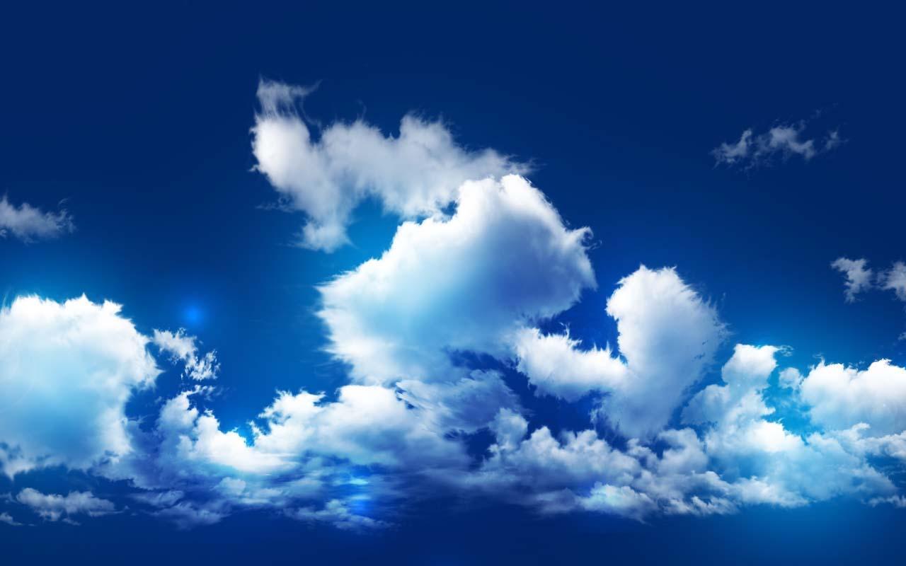 天空最大的动物