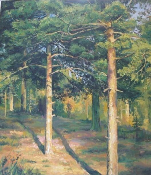 茂密的松树林怎么画