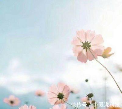 2018微信唯美暖心风景头像高清大全!