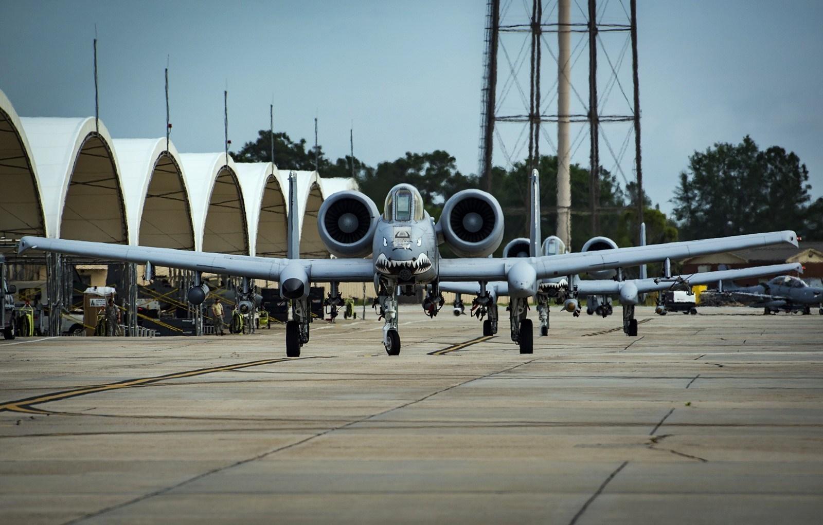 美军A-10攻击机玩大象漫步:密密麻麻一大片 - 一统江山 - 一统江山的博客