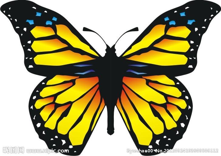 矢量蝴蝶矢量图__昆虫_生物世界_矢量图库_昵