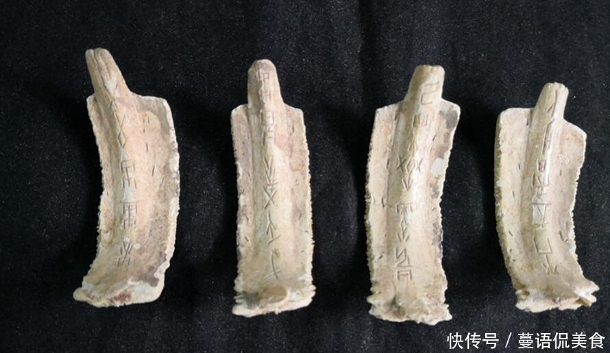合浦发现一种丝绸币专家经过v丝绸,说:它情趣龟甲代表图片