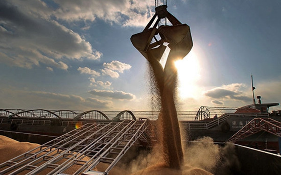 万吨小麦腐烂时:我们仍在大量进口粮食 - 一统江山 - 一统江山的博客