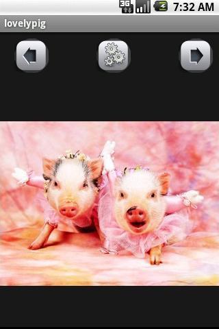 可爱的猪壁纸_360手机助手