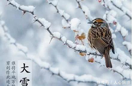 大雪节气的诗句 描写冬天大雪的诗句 大雪节气