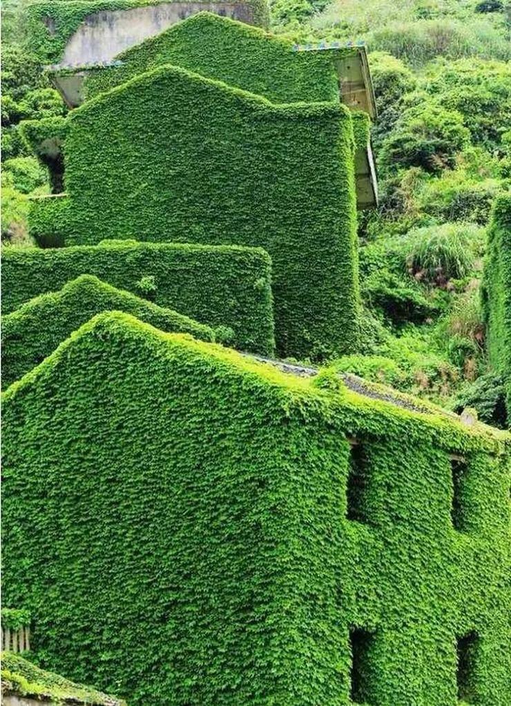 被荒废了20年的无人岛 遍地是别墅没人住太可惜 - 后老兵 - 雲南铁道兵战友HOU老兵博客;