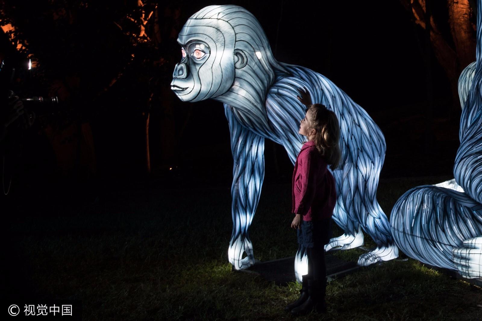 2017悉尼灯光音乐节:动物发光都能想出来!
