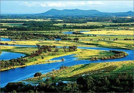 大兴安岭山脉繁衍生息着400多种野生动物和1000余种野生植物.图片