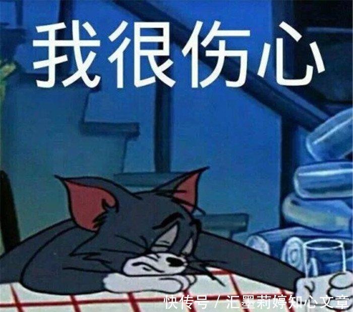 猫和老鼠系列搞笑表情:不服你顺着网线来打图兔猜加人名表情包图片