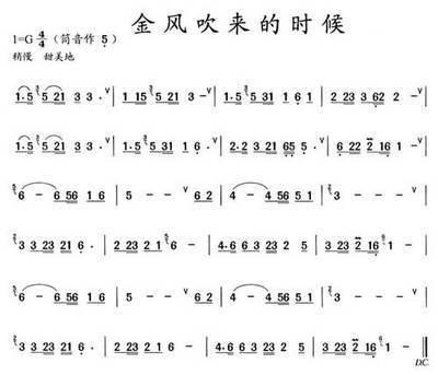 葫芦丝乐谱上用括号括着的音是什么意思 如月光下的凤尾竹的谱里有这