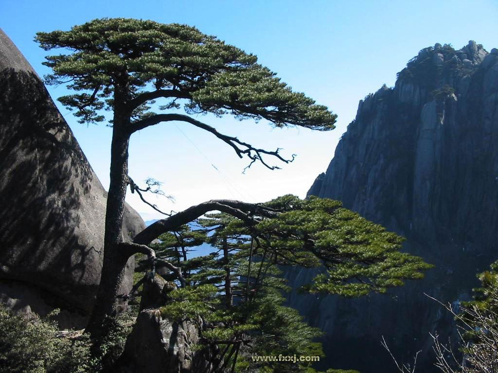 黄山风景区(huangshan mountain)是中国著名风景区之一,世界游览胜地