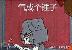 表情Tom&Jerry你在说我吗表情包图片