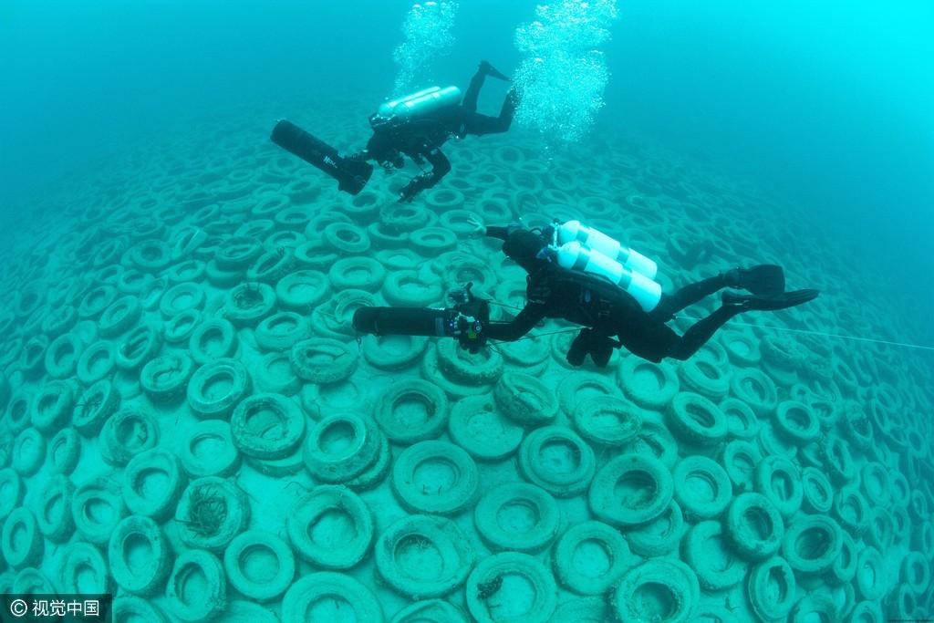 """""""百万轮胎坟墓"""":曾经的人工海礁沦为环境灾难 【图文转载】"""