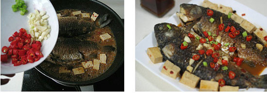 装桶里的鲫鱼图片