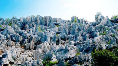 丫山风景区位于安徽省芜湖市南陵县何湾镇