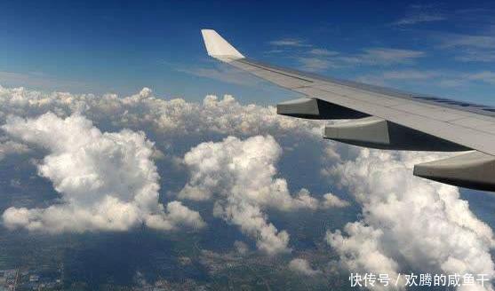 男子飞机上拍云朵照,意外发现不明生物, 乘客们都开始祈祷了!