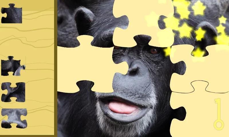 动物拼图收集下载