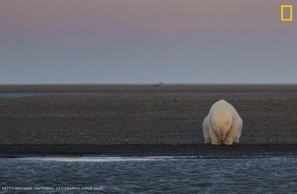 【转】北京时间     全球气候变暖会怎样?这18张照片告诉你 - 妙康居士 - 妙康居士~晴樵雪读的博客