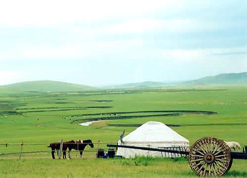 内蒙古自治区地域辽阔,地层发育齐全,岩浆活动频繁,成矿条件好,矿产