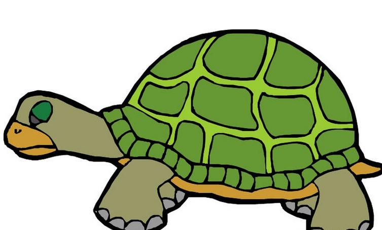 两栖动物(学名:Amphibia)包括所有生没有卵壳的卵,拥有四肢的脊椎动物。两栖动物的皮肤裸露,表面没有鳞片,毛发等覆盖,但是可以分泌粘液以保持身体的湿润;其幼体在水中生活,用鳃进行呼吸,长大后用肺兼皮肤呼吸。两栖动物可以爬上陆地,但是不能一生离水,因为可以在两处生存,称为两栖。它是脊椎动物从水栖到陆栖的过渡类型。现在大约有三千多种两栖动物。两栖动物是冷血动物。