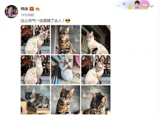"""太自恋!韩庚变""""炫猫狂人""""自侃猫的帅气随主人"""