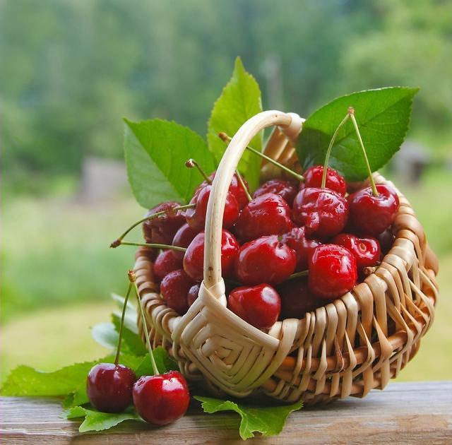 樱桃季已至,你知道它的功效有哪些吗? -  - 真光 的博客