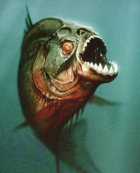 最凶猛的鱼 世界上最凶猛的鱼 世界上最凶猛的鱼