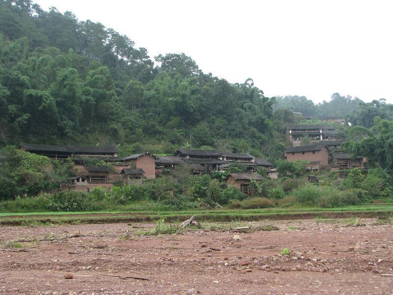 大仓村隶属于勐大镇勐统行政村