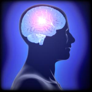 Brain game
