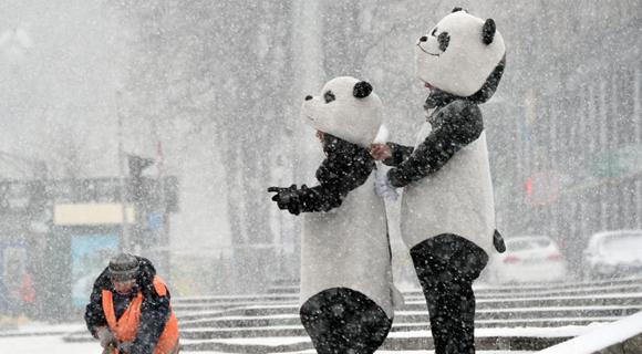 乌克兰基辅大雪纷飞 市民穿动物套装悠然赏雪景